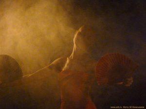 Ольга Арефьева и «Ковчег». Фотографии с концерта в г. Апатиты 24 октября 2010 (программа «Анатомия»). Фото Фото Марии Никишаевой