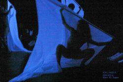 """Фотографии с выступления """"KALIMBA"""" в культурном центре """"Ротонда"""" 9 августа 2006. Фото: Ю.Зарни"""