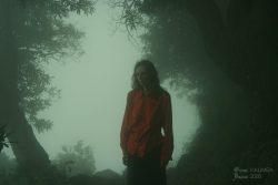 Ольга Арефьева. Фотографии из поездки в Индию (август-сентябрь 2008). Фото Лены KALIMBA