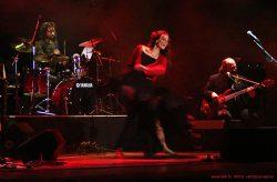 Ольга Арефьева и «Шансон-Ковчег». Фото с концерта «Шансон-Ковчега» в Киеве (Дом офицеров) 17 октября 2008. Фото Ксении